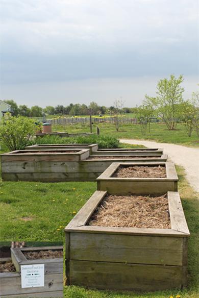 Photo: Master Gardener beds and plots.